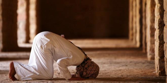 bønnerne